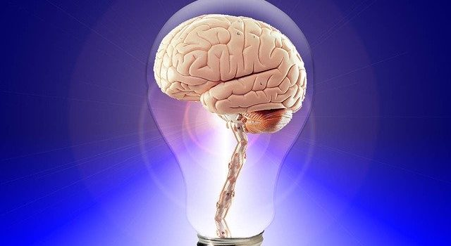 Brain Fitness | Clearwater | Brain Fitness Center of Florida