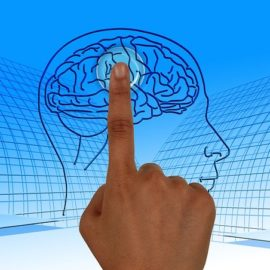 Cognitive and Memory Training | Clearwater | Brain Fitness of Florida